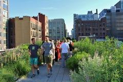 L'alta linea, New York Fotografie Stock Libere da Diritti