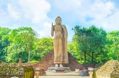 L'alta statua di Buddha in Maligawila Fotografia Stock