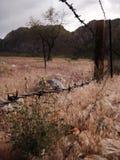 L'alto deserto Fotografie Stock