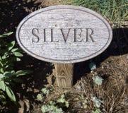 L'altro argento Immagini Stock