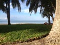 L'Amérique du Sud, Mexique, Puerto Vallarta, nourriture exotique Images libres de droits