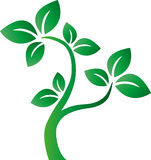 L'ambiente verde dell'albero circonda il logotype Immagini Stock Libere da Diritti