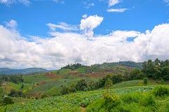 L'AMI de l'AR Chaing de montagne de confiture de lundi, Thaïlande Photographie stock