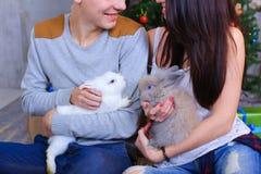 L'ami et l'amie posent pour l'appareil-photo avec le lapin et rire Photographie stock libre de droits