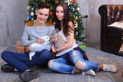 L'ami et l'amie posent pour l'appareil-photo avec le lapin et rire Photo stock