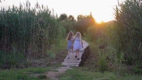 L'amitié d'enfants, de petites filles douces heureuses d'amis marchent tenant des mains sur le pont en bois parmi la végétation é banque de vidéos
