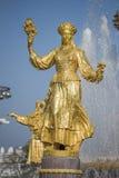 L'amitié de fontaine de l'URSS Photographie stock