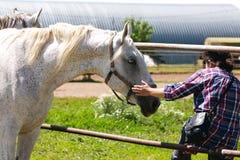 L'amitié entre le cheval et l'homme Image stock