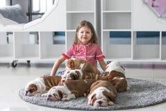 L'amitié entre une petite fille et des chiots mignons de bouledogue Image stock