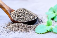 L'ammi de Trachyspermum, graines d'Ajwain dans un scoop en bois avec certains part sur un fond de jute Photographie stock