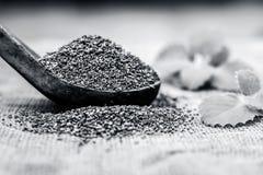 L'ammi de Trachyspermum, graines d'Ajwain dans un scoop en bois avec certains part sur un fond de jute Photo stock