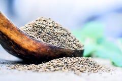 L'ammi de Trachyspermum, graines d'Ajwain dans un scoop en bois avec certains part sur un fond de jute Photos libres de droits