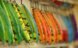 L'amorce pour la pêche Photographie stock