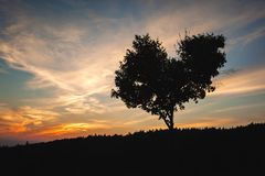 L'amore è dappertutto immagine stock libera da diritti