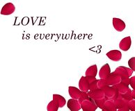 L'amore è dappertutto Fotografia Stock