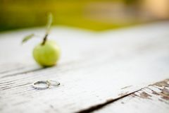L'amore è nella mela, fedi nuziali fotografie stock