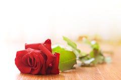 L'amore perso Fotografia Stock