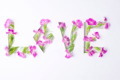 L'amour d'inscription des fleurs Photo libre de droits