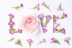 L'amour d'inscription des fleurs Photographie stock