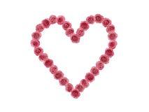 l'amour de coeur a effectué beaucoup de roses rouges Image libre de droits