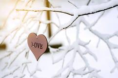 L'amour de mot au coeur en parc d'hiver Photographie stock libre de droits