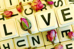 L'amour de mot avec des roses Photo libre de droits