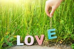 L'amour de mot avec les lettres colorées multi en bois sur l'herbe naturelle Photo stock