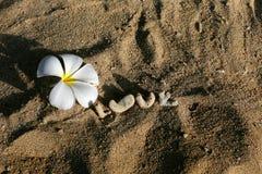 L'amour de mot dans le sable Image libre de droits