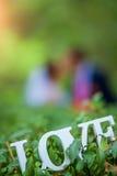 L'amour de mot en bois blanc sur un buisson vert Image stock