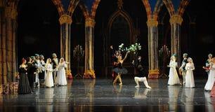 L'amour de prince faux - Le lac adulte swan de cérémonie-ballet de prince Photographie stock libre de droits