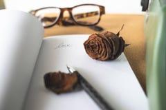 L'amour Defocused et défraîchi a monté sur le livre blanc et les rétros herbes Photos stock