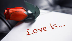 L'amour est écrit sur le livre blanc avec la rose de rouge Photo stock