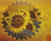 L'amour est la manière Image stock