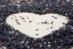 L'amour est (le riz de jasmin) Image stock