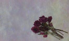 L'amour est mort Photographie stock
