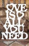 L'amour est tout que vous devez chanter au-dessus de la terre rustique Image libre de droits