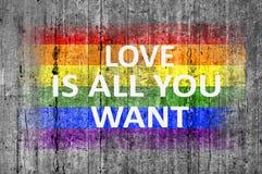 L'amour est tout que vous voulez et drapeau de LGBT peint sur la texture de fond Photo libre de droits