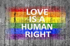 L'amour est un droit de l'homme et drapeau de LGBT peint sur la texture de fond Photo stock