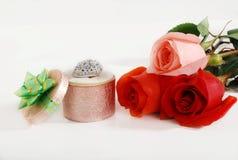 L'amour et le valentine ont monté Photos stock
