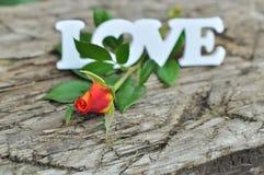 L'amour et a monté Photo libre de droits