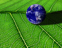 L'amour et s'inquiètent le concept de la terre Photos libres de droits