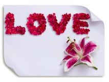 L'amour fait à partir des pétales de rose rouges et le lis fleurissent sur le papier Photo libre de droits