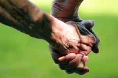 L'amour ne connaît aucun âge Photos libres de droits