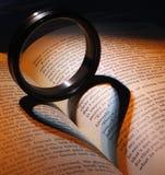 L'amour pour la lecture Photographie stock