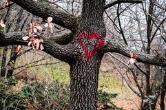 L'amour se connectent l'arbre d'A à un parc en Roumanie Photos libres de droits