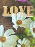 L'amour se connectent le fond en bois de vintage et le premier plan de fleur blanche image libre de droits