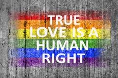 L'amour vrai est un droit de l'homme et drapeau de LGBT peint sur la texture de fond Photos libres de droits