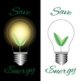 L'ampoule avec le vert part sur le fond blanc et noir Photos stock