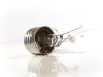 L'ampoule brûlée. Lampe. Images libres de droits