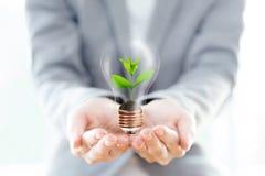 L'ampoule de prise de femme d'affaires avec le sol et la plante verte poussent photographie stock